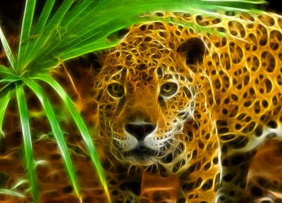 animals, Fractalius, jaguars - random desktop wallpaper