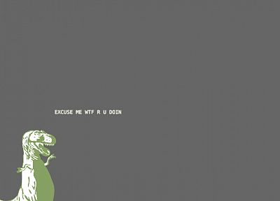 minimalistic, meme, Tyrannosaurus Rex, grey background - desktop wallpaper