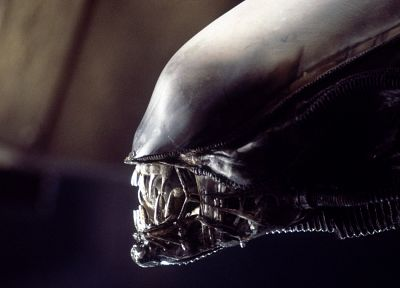 movies, Xenomorph, creatures, teeth, Aliens movie, Alien, giger - random desktop wallpaper