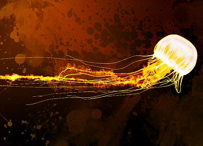 abstract, orange, grunge, jellyfish - random desktop wallpaper