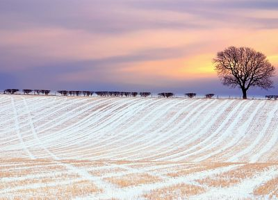 sunset, landscapes, nature, winter, snow, dawn, fields, skyscapes - desktop wallpaper