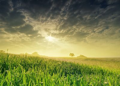 sunset, clouds, landscapes, nature, grass, fields, sunlight, digital art, skyscapes - desktop wallpaper