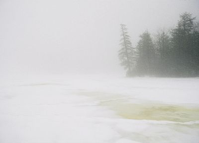winter, fog - random desktop wallpaper