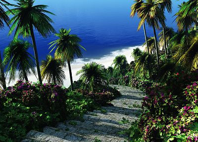 water, paths, stairways, palm trees - random desktop wallpaper
