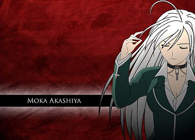 vampires, Akashiya Moka, white hair, Rosario to Vampire - random desktop wallpaper