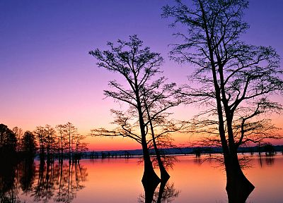 water, sunset, landscapes, nature, trees, dusk - related desktop wallpaper