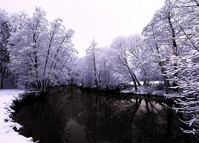 winter, snow, trees - desktop wallpaper