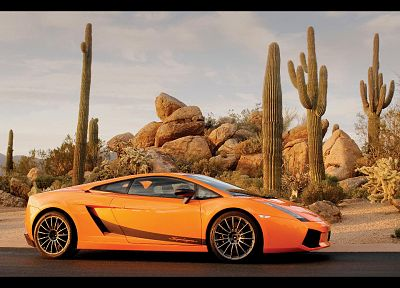 cars, orange, Lamborghini, cactus, vehicles, supercars, Lamborghini Gallardo, side view, Lamborghini Gallardo LP570-4 Superleggera, italian cars - desktop wallpaper