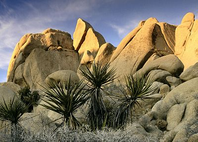 rocks, California, National Park, Joshua Tree National Park - random desktop wallpaper