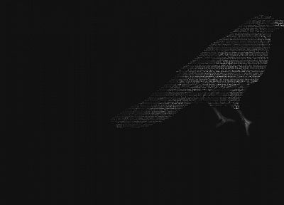 birds, grayscale, monochrome, ravens - desktop wallpaper