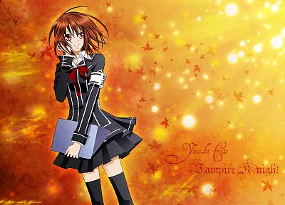 Vampire Knight, anime - desktop wallpaper