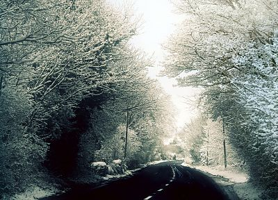 winter, snow, trees, woods, roads, George Harrison - related desktop wallpaper