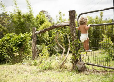 fences, garden, situation, children - random desktop wallpaper