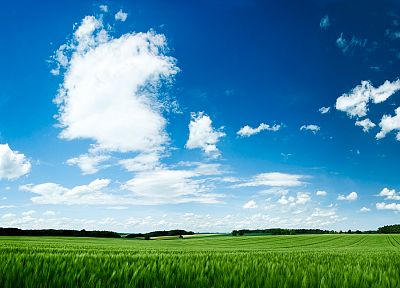 nature, grass, skyscapes, blue skies - random desktop wallpaper