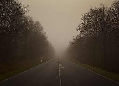 trees, fog, roads - random desktop wallpaper