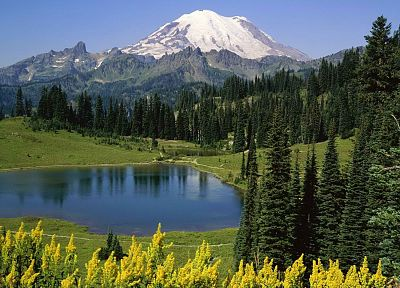 mountains, landscapes, trees, lakes, National Park, Mount Rainier, Washington State - related desktop wallpaper