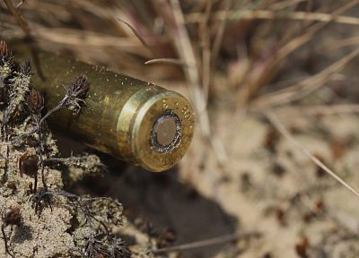 sand, flowers, ammunition, bullets, shell casings - random desktop wallpaper