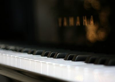 piano, instruments, depth of field - random desktop wallpaper