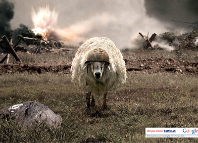 sheep, Google, vehicles, battleships - random desktop wallpaper