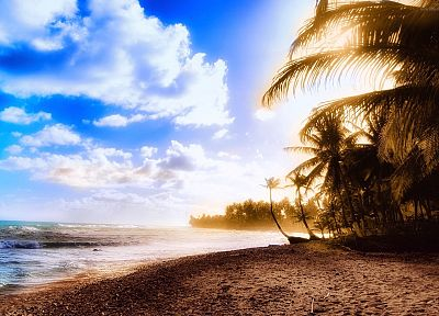 ocean, clouds, sand, trees, tropical, sunlight, palm trees, skyscapes, beaches - desktop wallpaper