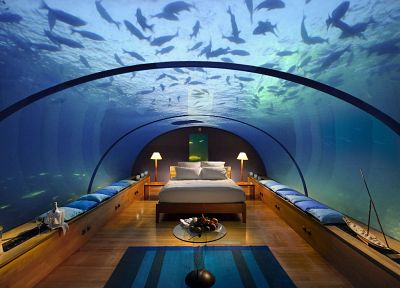 beds, fish, pillows, underwater, interior design - random desktop wallpaper