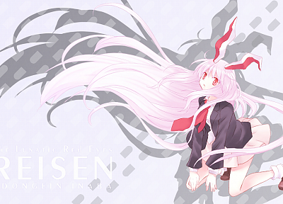 Touhou, tie, long hair, shadows, bunny girls, animal ears, Reisen Udongein Inaba, white hair, bunny ears, anime girls - desktop wallpaper