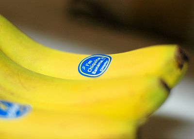 yellow, bananas, chiquita - random desktop wallpaper