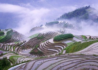 mountains, clouds, landscapes, fields, mist, rice, misery - desktop wallpaper