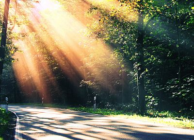 landscapes, trees, DeviantART, sunlight, roads, morning, sunbeams - desktop wallpaper