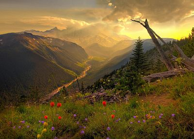 mountains, clouds, landscapes, nature, flowers, valleys, wildflowers - related desktop wallpaper