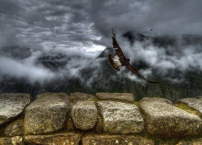 clouds, landscapes, birds, wall, stones - desktop wallpaper