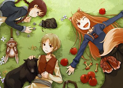 Spice and Wolf, animal ears, Holo The Wise Wolf, apples - related desktop wallpaper