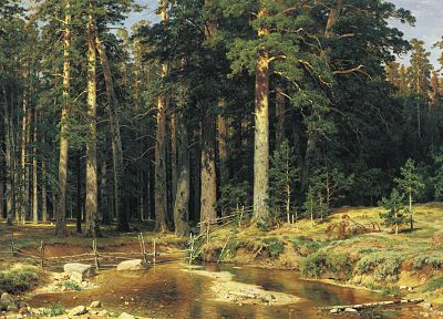 paintings, forests, artwork, Ivan Shishkin - related desktop wallpaper