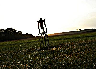 horror, fields, scarecrow - random desktop wallpaper