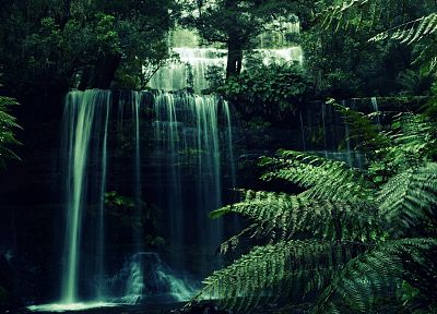 nature, forests, waterfalls - random desktop wallpaper
