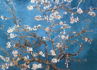blossoms, Vincent Van Gogh, artwork, almond - random desktop wallpaper