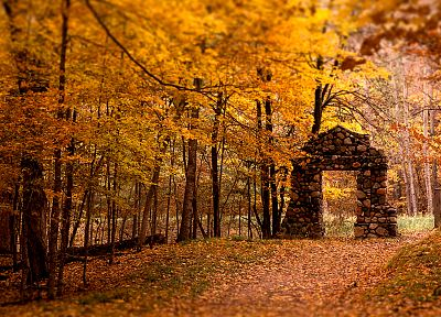 landscapes, nature, trees, autumn, yellow, forests, fields, stones, gate, trail - related desktop wallpaper