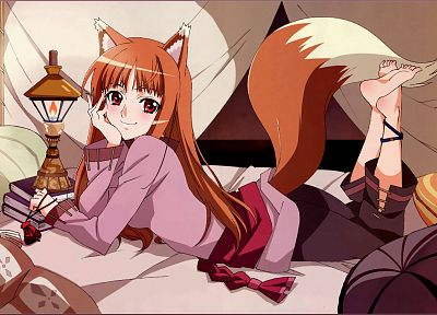 tails, Spice and Wolf, long hair, animal ears, red eyes, Holo The Wise Wolf, inumimi - related desktop wallpaper