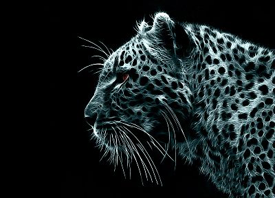 black, white, digital, leopards - random desktop wallpaper