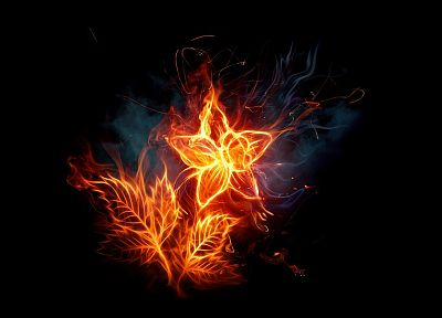 flames, flowers, fire, photo manipulation, black background, fire flower - random desktop wallpaper