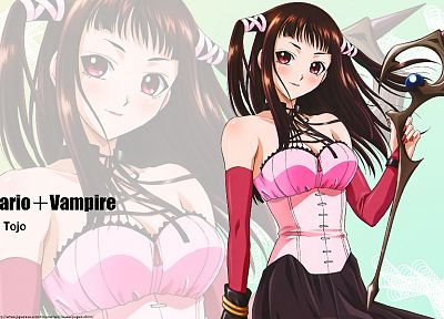 brunettes, Rosario to Vampire, detached sleeves - random desktop wallpaper