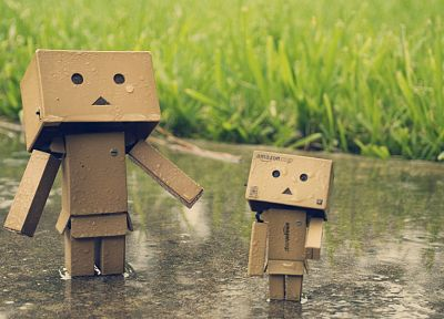 rain, grass, Danboard, water drops - related desktop wallpaper