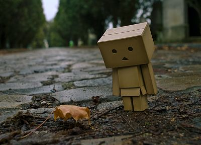 Danboard - random desktop wallpaper