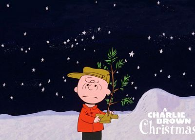Charlie Brown, Peanuts (Comic Strip) - random desktop wallpaper