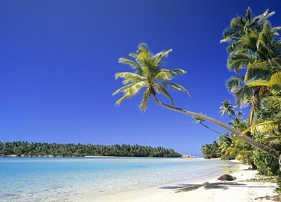 Sun, sand, Cook Islands, palm trees - desktop wallpaper