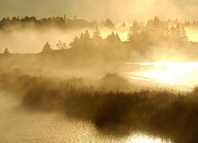 sunrise, landscapes, nature, mist - related desktop wallpaper