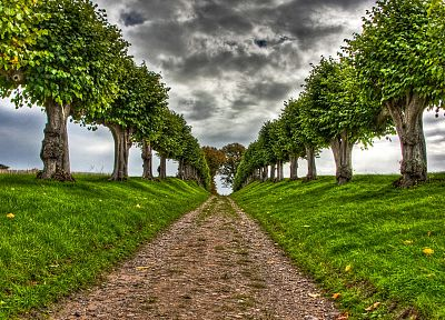 clouds, landscapes, trees, paths, HDR photography - random desktop wallpaper