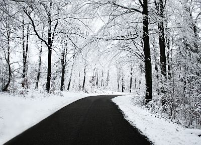 nature, winter, snow, trees, roads - related desktop wallpaper