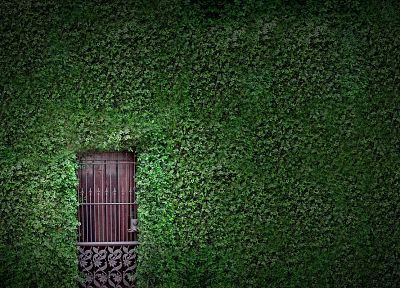 nature, houses, hedges, gates, doors, vines - random desktop wallpaper
