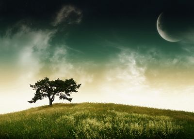 landscapes, nature, trees, planets - random desktop wallpaper